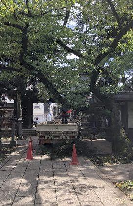 台風15号 川口神社